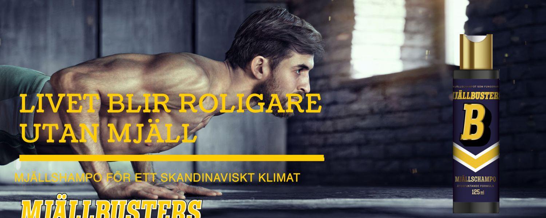 Cover image for Blogga om mjällschampo!